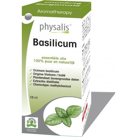 Basilicum (Ocimum basilicum)