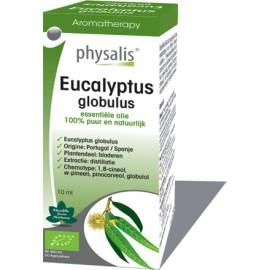 Physalis Eucalyptus globulus (Eucalyptus globulus) 10ml