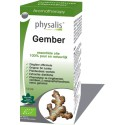 Physalis Gember (Zingiber officinale) 10ml